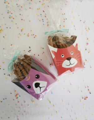 מארזי צ׳יפס חתול וכלב פיצי ופודי