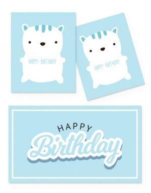 יום הולדת שנה לבנים - קונספט דובי