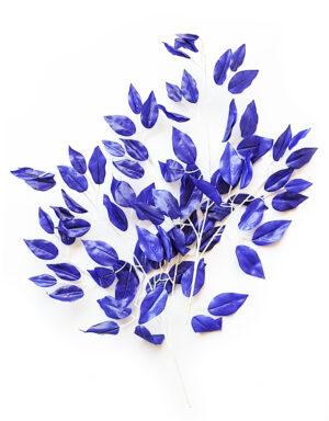 עלי פיקוס בגוון כחול יווני